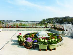 屋上庭園2